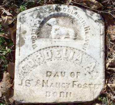 FOSTER, CORDELIA A. - Crawford County, Arkansas   CORDELIA A. FOSTER - Arkansas Gravestone Photos