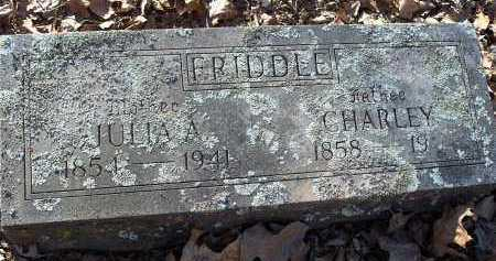 FRIDDLE, CHARLEY - Crawford County, Arkansas | CHARLEY FRIDDLE - Arkansas Gravestone Photos