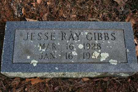 GIBBS, JESSE - Crawford County, Arkansas | JESSE GIBBS - Arkansas Gravestone Photos
