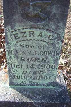 GOWIN, EZRA C - Crawford County, Arkansas | EZRA C GOWIN - Arkansas Gravestone Photos