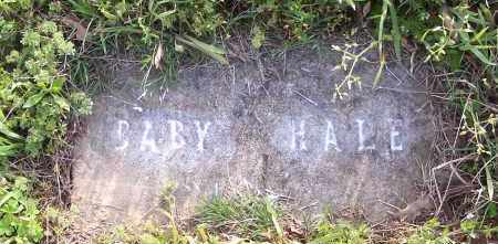 HALE, BABY - Crawford County, Arkansas | BABY HALE - Arkansas Gravestone Photos