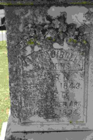 HAWKINS, JAMES DIBRELL - Crawford County, Arkansas | JAMES DIBRELL HAWKINS - Arkansas Gravestone Photos