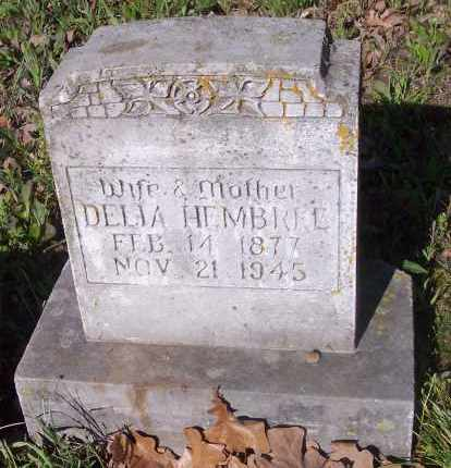 HEMBREE, DELIA - Crawford County, Arkansas | DELIA HEMBREE - Arkansas Gravestone Photos