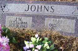 JOHNS, J W - Crawford County, Arkansas | J W JOHNS - Arkansas Gravestone Photos