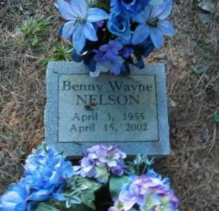 NELSON, BENNY WAYNE - Crawford County, Arkansas | BENNY WAYNE NELSON - Arkansas Gravestone Photos