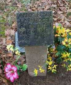 PENSE, AMOS - Crawford County, Arkansas | AMOS PENSE - Arkansas Gravestone Photos