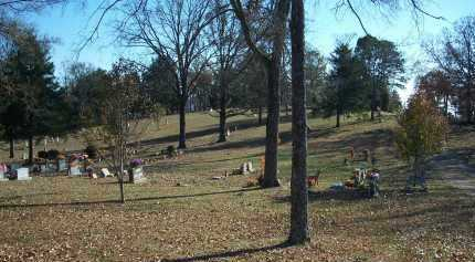 *VAUGHT  OVERVIEW,  - Crawford County, Arkansas |  *VAUGHT  OVERVIEW - Arkansas Gravestone Photos