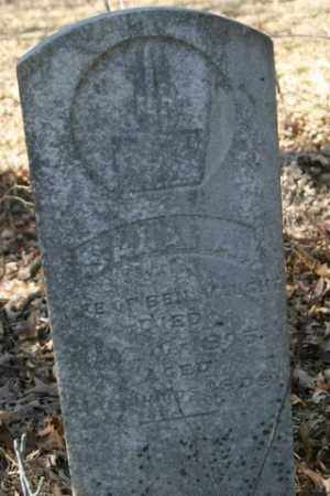 VAUGHT, SARAH A - Crawford County, Arkansas | SARAH A VAUGHT - Arkansas Gravestone Photos