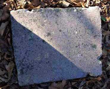 WOODS, DELMAR F. - Crawford County, Arkansas | DELMAR F. WOODS - Arkansas Gravestone Photos