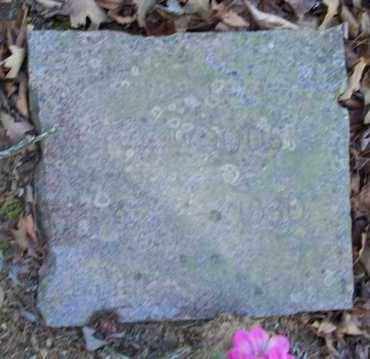 WOODS, EVA - Crawford County, Arkansas | EVA WOODS - Arkansas Gravestone Photos