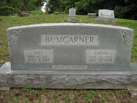 BUMGARNER, ENDIA - Cross County, Arkansas | ENDIA BUMGARNER - Arkansas Gravestone Photos