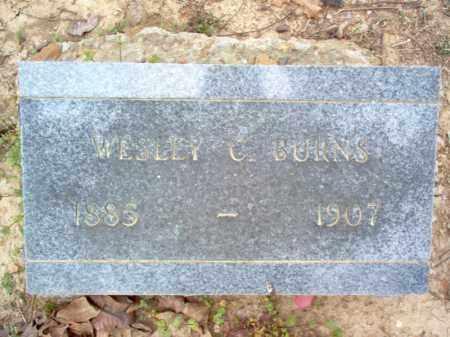 BURNS, WESLEY C - Cross County, Arkansas | WESLEY C BURNS - Arkansas Gravestone Photos