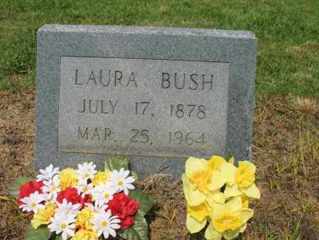 BUSH, LAURA - Cross County, Arkansas | LAURA BUSH - Arkansas Gravestone Photos