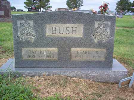 BUSH, RAYMOND - Cross County, Arkansas | RAYMOND BUSH - Arkansas Gravestone Photos