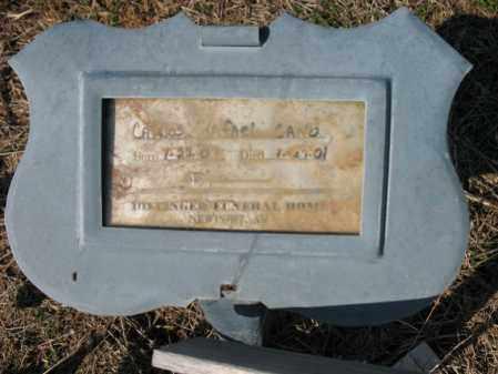 CANO, CARLOS RAFAEL - Cross County, Arkansas | CARLOS RAFAEL CANO - Arkansas Gravestone Photos
