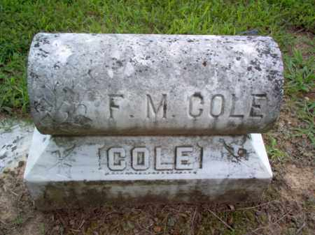 COLE, F M - Cross County, Arkansas | F M COLE - Arkansas Gravestone Photos