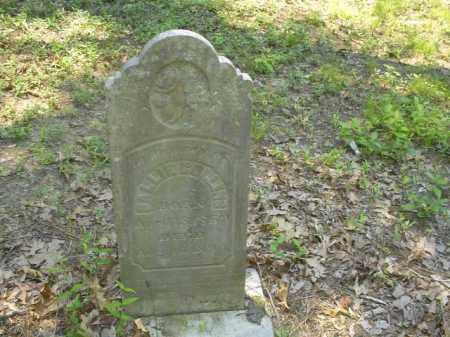 COLLINS, SALLIE - Cross County, Arkansas | SALLIE COLLINS - Arkansas Gravestone Photos
