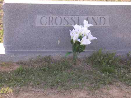 CROSSLAND FAMILY STONE,  - Cross County, Arkansas |  CROSSLAND FAMILY STONE - Arkansas Gravestone Photos
