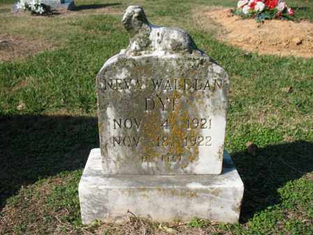 DYE, NEVA WALDEAN - Cross County, Arkansas | NEVA WALDEAN DYE - Arkansas Gravestone Photos