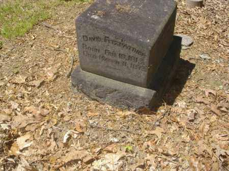 FITZPATRICK, DAVID - Cross County, Arkansas | DAVID FITZPATRICK - Arkansas Gravestone Photos
