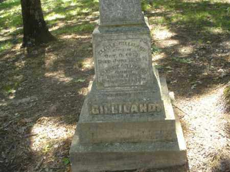 GILLILAND, SAMMIE - Cross County, Arkansas | SAMMIE GILLILAND - Arkansas Gravestone Photos