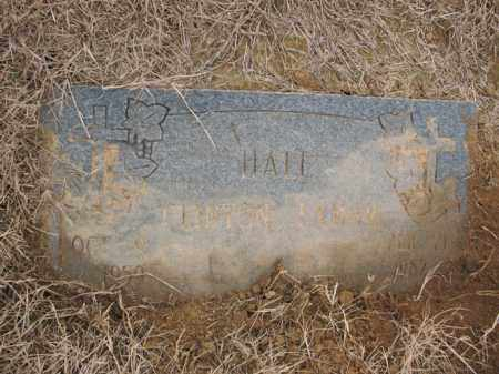 HALL, CLINTON LAMAR - Cross County, Arkansas | CLINTON LAMAR HALL - Arkansas Gravestone Photos