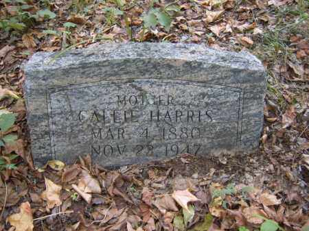 HARRIS, CALLIE - Cross County, Arkansas | CALLIE HARRIS - Arkansas Gravestone Photos