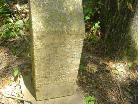 HARRIS, SALLIE - Cross County, Arkansas | SALLIE HARRIS - Arkansas Gravestone Photos