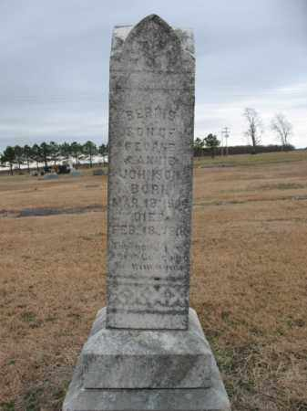 JOHNSON, BERNIE - Cross County, Arkansas | BERNIE JOHNSON - Arkansas Gravestone Photos