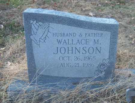 JOHNSON, WALLACE M - Cross County, Arkansas | WALLACE M JOHNSON - Arkansas Gravestone Photos