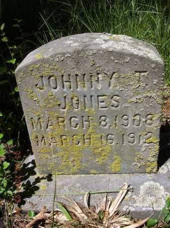 JONES, JOHNNY T - Cross County, Arkansas | JOHNNY T JONES - Arkansas Gravestone Photos