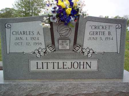 LITTLEJOHN, CHARLES A - Cross County, Arkansas | CHARLES A LITTLEJOHN - Arkansas Gravestone Photos