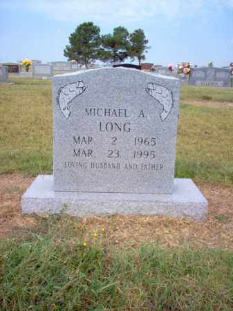 LONG, MICHAEL A - Cross County, Arkansas | MICHAEL A LONG - Arkansas Gravestone Photos