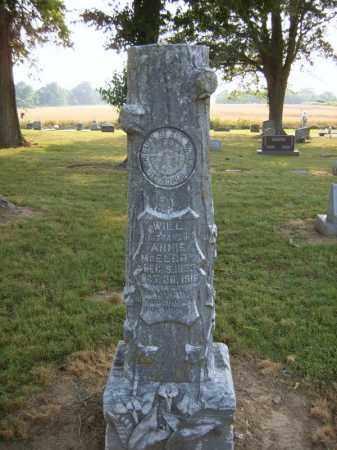 MCELROY, WILL - Cross County, Arkansas | WILL MCELROY - Arkansas Gravestone Photos