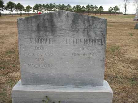 NORVIEL, LOTTIE - Cross County, Arkansas | LOTTIE NORVIEL - Arkansas Gravestone Photos