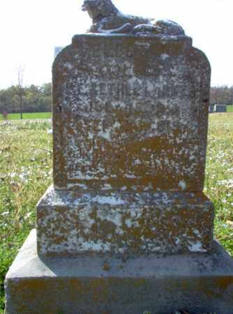 PARKER, ELBET L - Cross County, Arkansas | ELBET L PARKER - Arkansas Gravestone Photos