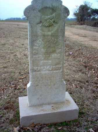 PATTON, DAISY - Cross County, Arkansas | DAISY PATTON - Arkansas Gravestone Photos
