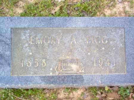 PIGG, EMORY A - Cross County, Arkansas | EMORY A PIGG - Arkansas Gravestone Photos