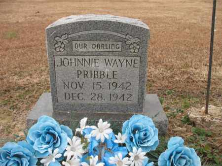 PRIBBLE, JOHNNIE WAYNE - Cross County, Arkansas | JOHNNIE WAYNE PRIBBLE - Arkansas Gravestone Photos