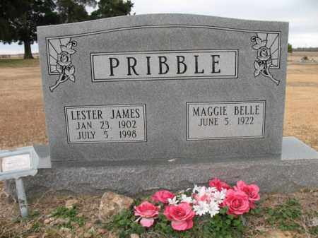 PRIBBLE, LESTER JAMES - Cross County, Arkansas | LESTER JAMES PRIBBLE - Arkansas Gravestone Photos