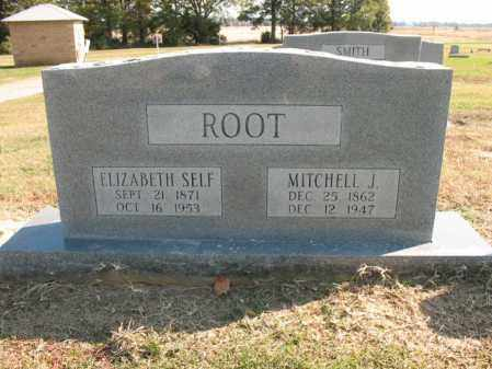 ROOT, ELIZABETH - Cross County, Arkansas | ELIZABETH ROOT - Arkansas Gravestone Photos