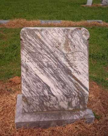 STEPHENS, CHARLIE - Cross County, Arkansas | CHARLIE STEPHENS - Arkansas Gravestone Photos