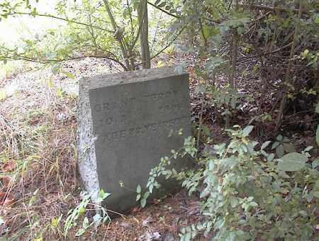 TERRY, GRANT - Cross County, Arkansas | GRANT TERRY - Arkansas Gravestone Photos