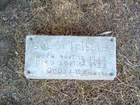 TRIBBLE, BULAH - Cross County, Arkansas | BULAH TRIBBLE - Arkansas Gravestone Photos