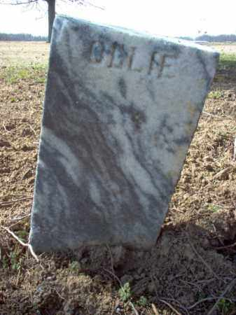 WALKER, OLLIE - Cross County, Arkansas | OLLIE WALKER - Arkansas Gravestone Photos
