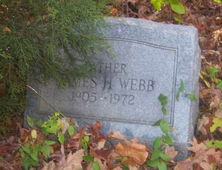 WEBB, JAMES H - Cross County, Arkansas | JAMES H WEBB - Arkansas Gravestone Photos