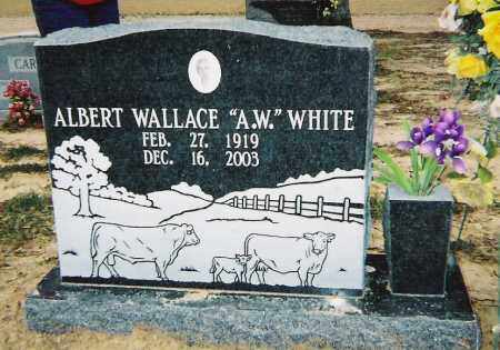 WHITE, ALBERT WALLACE - Cross County, Arkansas | ALBERT WALLACE WHITE - Arkansas Gravestone Photos
