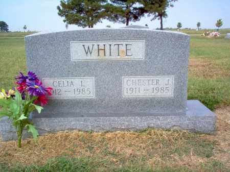 WHITE, CHESTER J - Cross County, Arkansas | CHESTER J WHITE - Arkansas Gravestone Photos