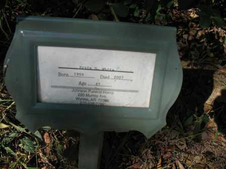 WHITE, ERVIN D - Cross County, Arkansas | ERVIN D WHITE - Arkansas Gravestone Photos