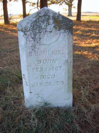 WILKINS, BENJAMIN M - Cross County, Arkansas | BENJAMIN M WILKINS - Arkansas Gravestone Photos